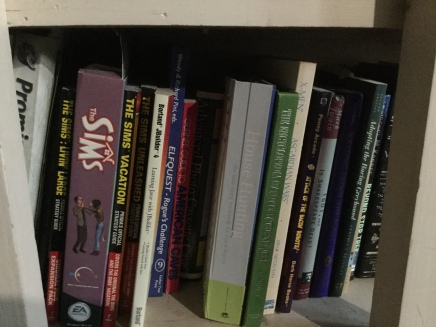A very random selection of books on the built-in bookselves